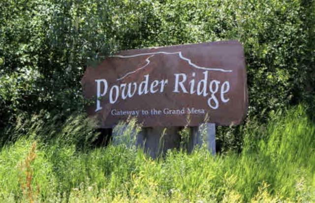 393 Powder Ridge Circle, Mesa, CO 81643 (MLS #20180455) :: The Christi Reece Group