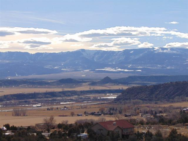 TBD County Road 214, Silt, CO 81652 (MLS #20180657) :: The Grand Junction Group