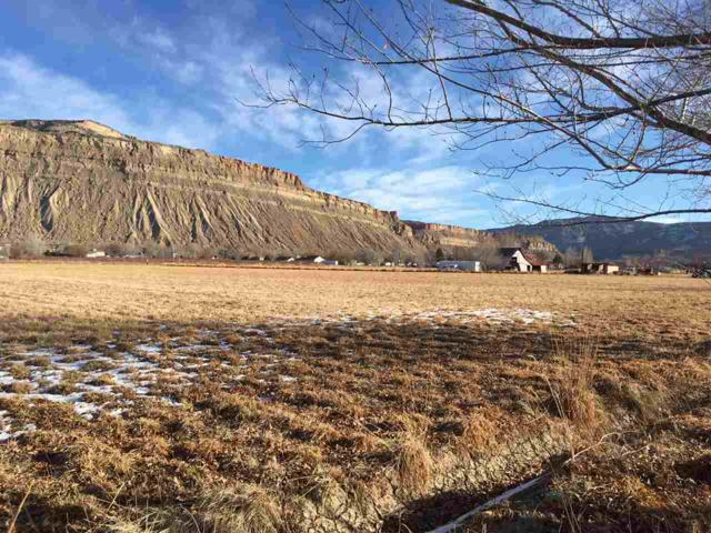 3720 G Road, Palisade, CO 81526 (MLS #20180849) :: CapRock Real Estate, LLC