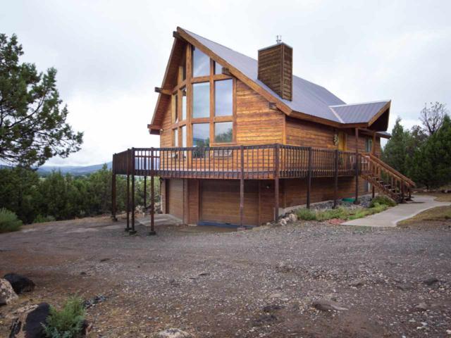 49958 Eagles Way, Mesa, CO 81643 (MLS #20180898) :: Keller Williams CO West / Mountain Coast Group