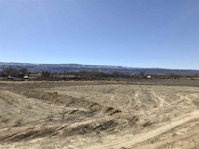 1735 Stremel Creek Court, Fruita, CO 81521 (MLS #20181080) :: The Christi Reece Group