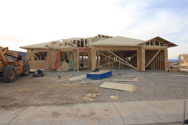1351 Eagle Way, Fruita, CO 81521 (MLS #20181349) :: CapRock Real Estate, LLC