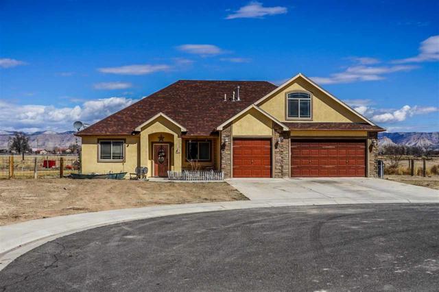 1860 Golden Ranch Road, Fruita, CO 81521 (MLS #20181372) :: CapRock Real Estate, LLC
