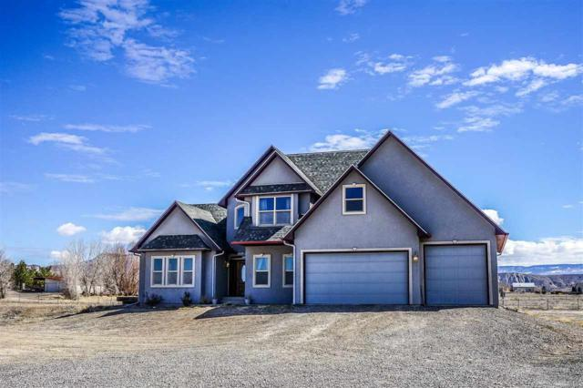 100 Martin Court, Whitewater, CO 81527 (MLS #20181380) :: Keller Williams CO West / Mountain Coast Group