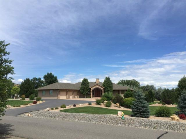 691 Curecanti Circle, Grand Junction, CO 81507 (MLS #20181415) :: The Christi Reece Group