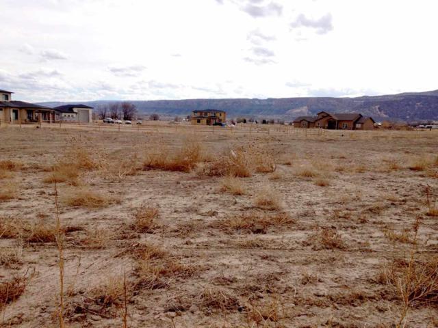1981 Alabama Boy Court, Fruita, CO 81521 (MLS #20181431) :: CapRock Real Estate, LLC