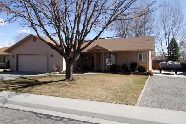 522 N Willow Street, Fruita, CO 81521 (MLS #20181451) :: CapRock Real Estate, LLC