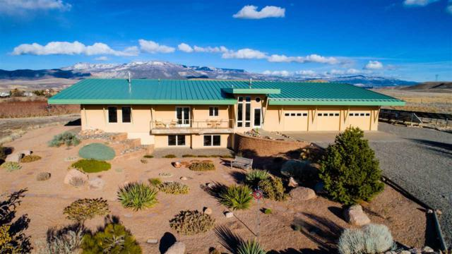 3369 C Road, Palisade, CO 81526 (MLS #20181595) :: The Grand Junction Group