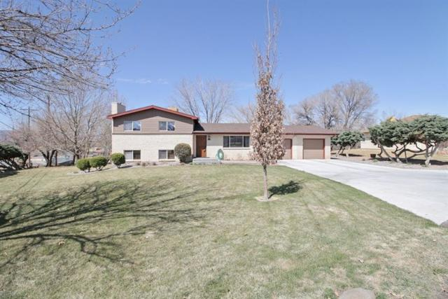 701 Putter Drive, Grand Junction, CO 81506 (MLS #20181665) :: The Christi Reece Group