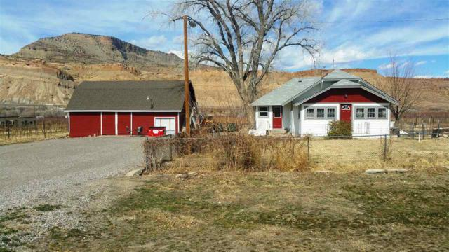 3864 G Road, Palisade, CO 81526 (MLS #20181683) :: The Grand Junction Group