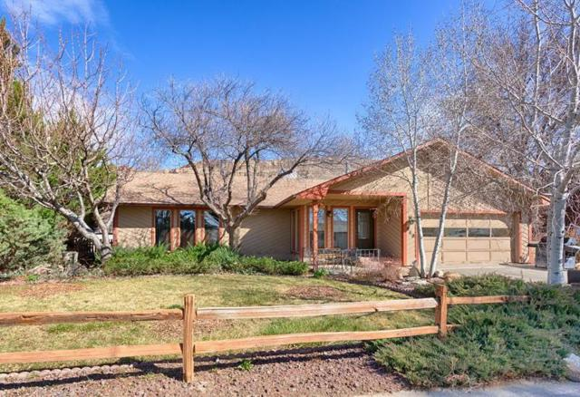 540 Crawford Lane, Palisade, CO 81526 (MLS #20181695) :: The Grand Junction Group
