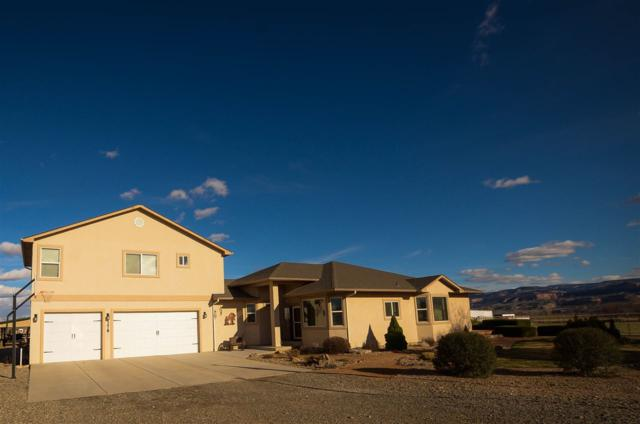 1278 Henrys Lane, Loma, CO 81524 (MLS #20181698) :: The Borman Group at eXp Realty