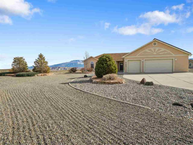 34540 Pronghorn Drive, Whitewater, CO 81527 (MLS #20181709) :: The Grand Junction Group