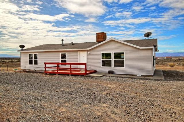 2071 Three Eagle Way, Loma, CO 81524 (MLS #20181727) :: The Borman Group at eXp Realty
