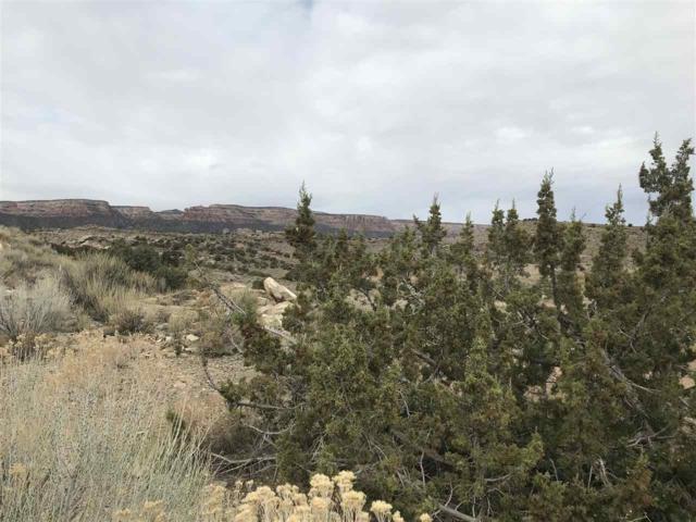 371 High Desert Road, Grand Junction, CO 81507 (MLS #20181739) :: The Grand Junction Group