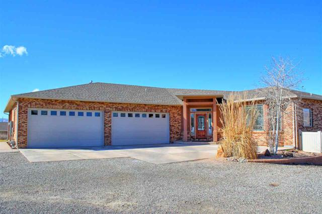 205 Knob Hill Drive, Grand Junction, CO 81503 (MLS #20181768) :: The Christi Reece Group