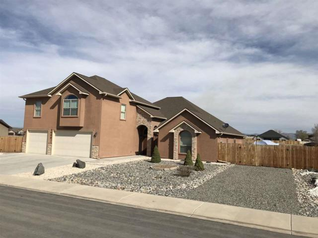 1695 Powis Lane, Fruita, CO 81521 (MLS #20181778) :: The Christi Reece Group