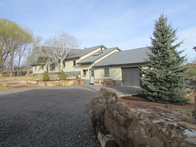 60331 Oasis Road, Montrose, CO 81403 (MLS #20181791) :: The Grand Junction Group