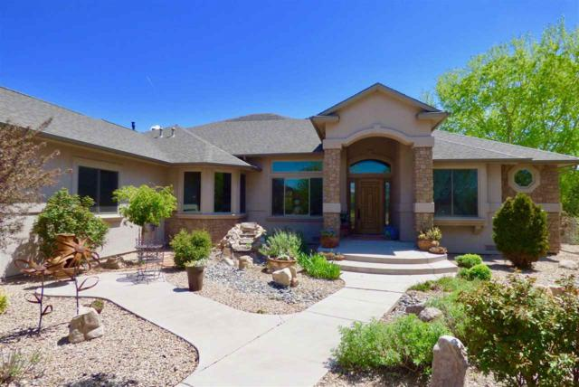 1007 Pritchard Mesa Court, Grand Junction, CO 81505 (MLS #20181829) :: The Christi Reece Group