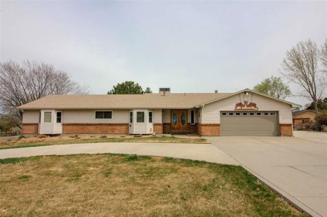 148 29 Road, Grand Junction, CO 81503 (MLS #20181850) :: The Christi Reece Group