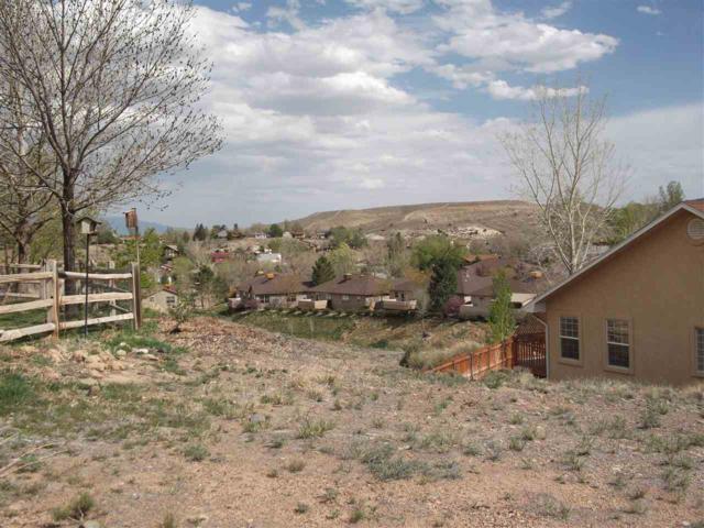 TBD Prospectors Point, Grand Junction, CO 81507 (MLS #20181952) :: The Christi Reece Group
