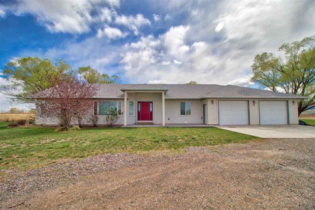 796 23 Road, Grand Junction, CO 81505 (MLS #20182068) :: CapRock Real Estate, LLC