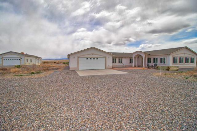703 Reeder Mesa Road, Whitewater, CO 81527 (MLS #20182075) :: The Grand Junction Group