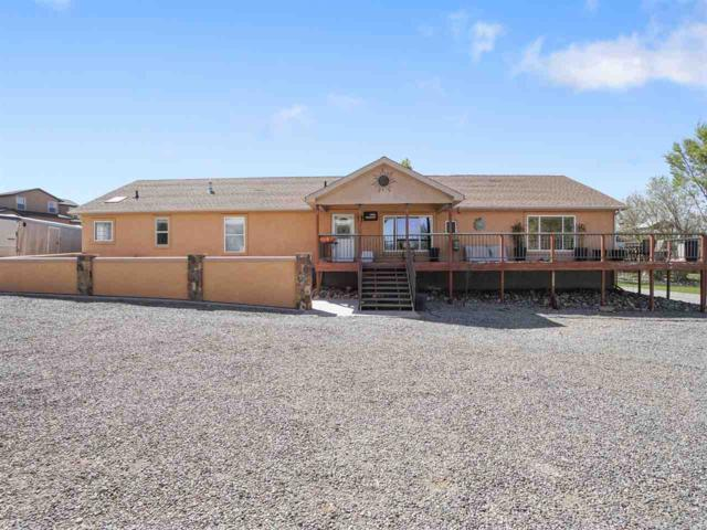 519 Reed Mesa Drive, Grand Junction, CO 81507 (MLS #20182207) :: The Borman Group at eXp Realty