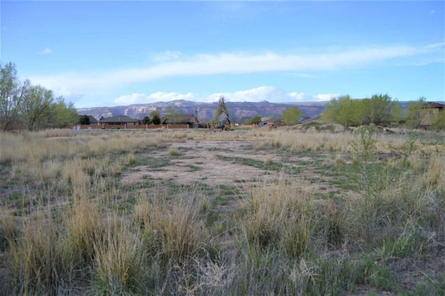 TBD Lot 1 Woodland Avenue Lot Number 1, Fruita, CO 81521 (MLS #20182227) :: The Christi Reece Group