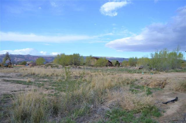 TBD Lot 3 Woodland Avenue Lot Number 3, Fruita, CO 81521 (MLS #20182228) :: The Christi Reece Group