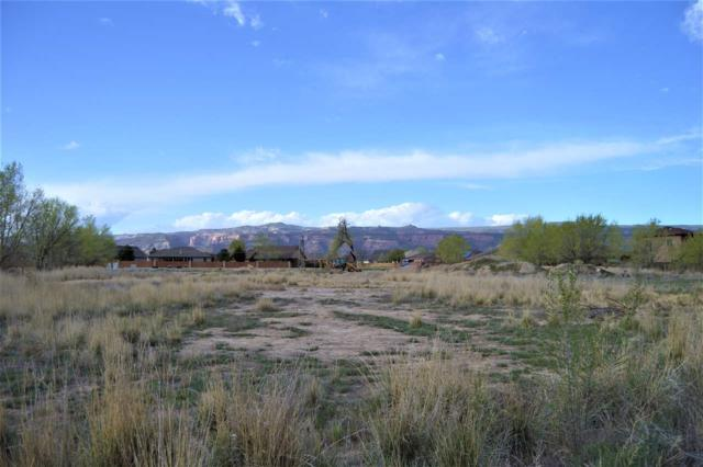 TBD Lot 9 Woodland Avenue Lot Number 9, Fruita, CO 81521 (MLS #20182233) :: The Christi Reece Group