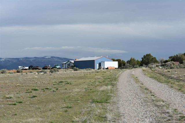 780 Grass Mesa Road, Rifle, CO 81650 (MLS #20182296) :: The Christi Reece Group