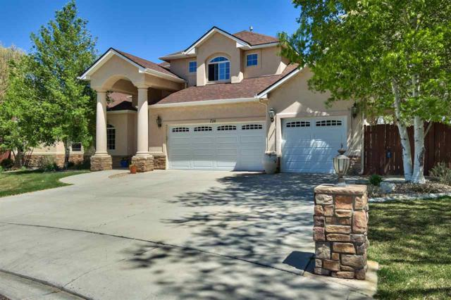 714 Foxwood Court, Grand Junction, CO 81507 (MLS #20182299) :: The Christi Reece Group
