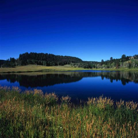 TBD Eighteen Mile Road, Glade Park, CO 81523 (MLS #20182346) :: The Christi Reece Group