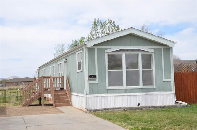 421 Virgo Way, Fruita, CO 81521 (MLS #20182482) :: CapRock Real Estate, LLC