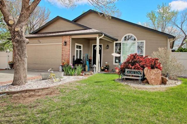 725 Pinyon Court, Fruita, CO 81521 (MLS #20182533) :: The Christi Reece Group