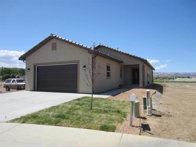 217 Dry Mesa Drive, Grand Junction, CO 81503 (MLS #20182540) :: The Christi Reece Group