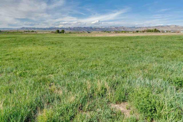 1658 O Road, Loma, CO 81524 (MLS #20182589) :: Keller Williams CO West / Mountain Coast Group