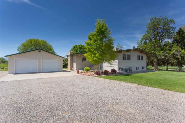 3423 D Road, Palisade, CO 81526 (MLS #20182590) :: The Christi Reece Group