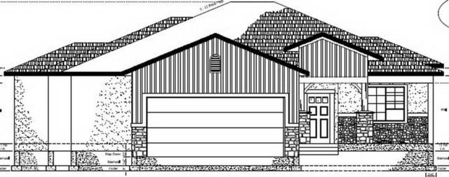 1097 Adobe View Way, Fruita, CO 81521 (MLS #20182643) :: The Christi Reece Group