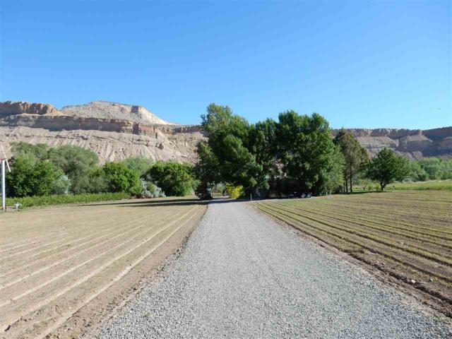 3826 G 1/4 Road, Palisade, CO 81526 (MLS #20182683) :: CapRock Real Estate, LLC