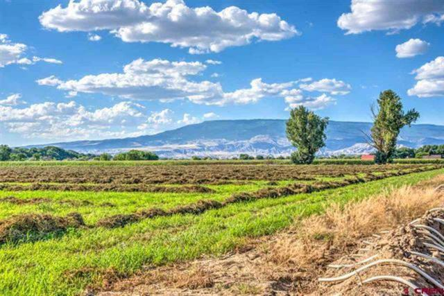 TBD 1600 Road, Delta, CO 81416 (MLS #20182851) :: The Grand Junction Group
