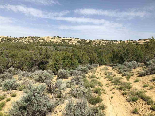 TBD Horse Canyon Road, De Beque, CO 81630 (MLS #20182864) :: CapRock Real Estate, LLC