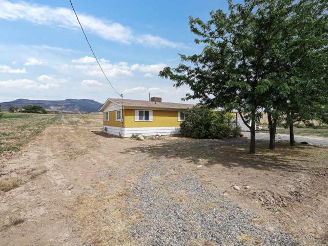 412 35 Road, Palisade, CO 81526 (MLS #20182934) :: The Christi Reece Group