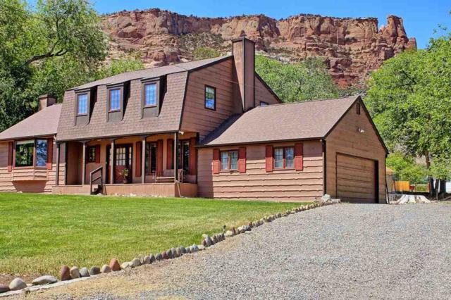 561 Chaparral Drive, Grand Junction, CO 81507 (MLS #20182962) :: CapRock Real Estate, LLC
