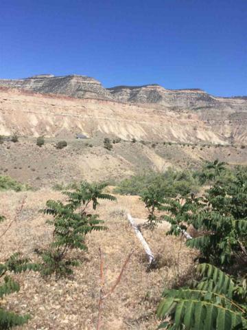 3855 Montana Vista, Palisade, CO 81526 (MLS #20182978) :: CapRock Real Estate, LLC