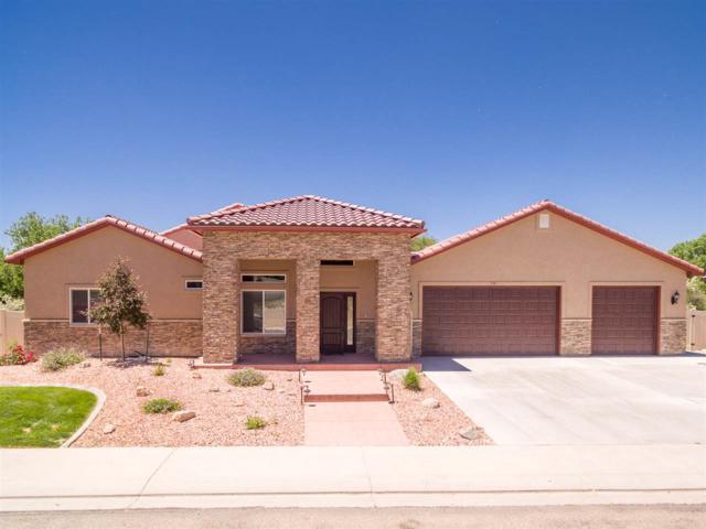 731 Beaver Lodge, Grand Junction, CO 81505 (MLS #20182979) :: CapRock Real Estate, LLC