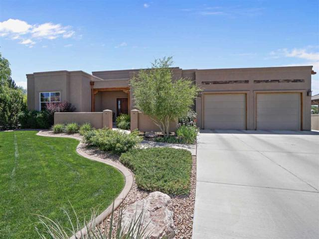 734 Egret Circle, Grand Junction, CO 81505 (MLS #20182998) :: The Christi Reece Group