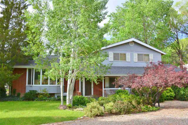 3587 G Road, Palisade, CO 81526 (MLS #20182999) :: CapRock Real Estate, LLC