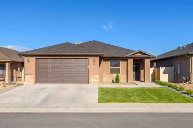 441 29 1/2 Road, Grand Junction, CO 81504 (MLS #20183046) :: The Christi Reece Group
